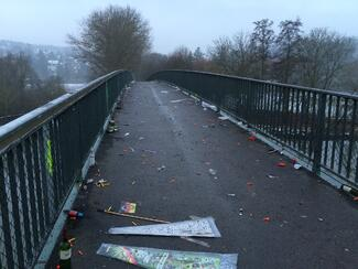 New-years-day-2015wuerzburg-litter