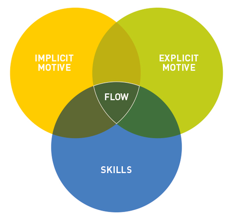 From Kehr, H. M. (2004): Integrating Implicit Motives, Explicit Motives, and Perceived Abilities: The Compensatory Model of Work Motivation and Volition. P. 479-499