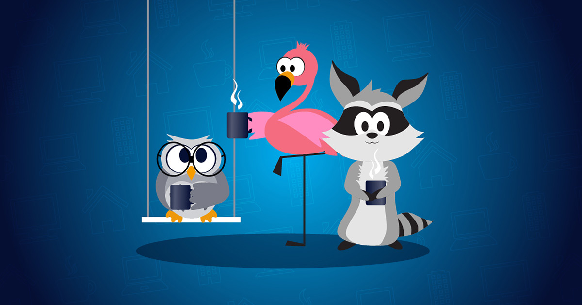 Office owl, flexible flamingo, or remote raccoon? How we at Paessler are changing the way we work